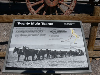 Twenty Mule teams pulled loads weighing up to 36 tons, including 1200 gallons of drinking water.